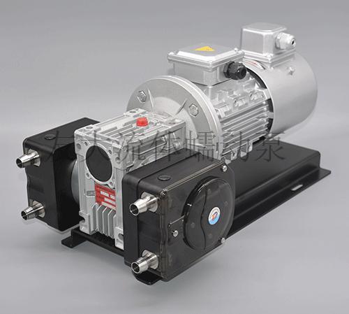 K45D2工业蠕动泵